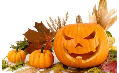 zucca-di-halloween-490×300